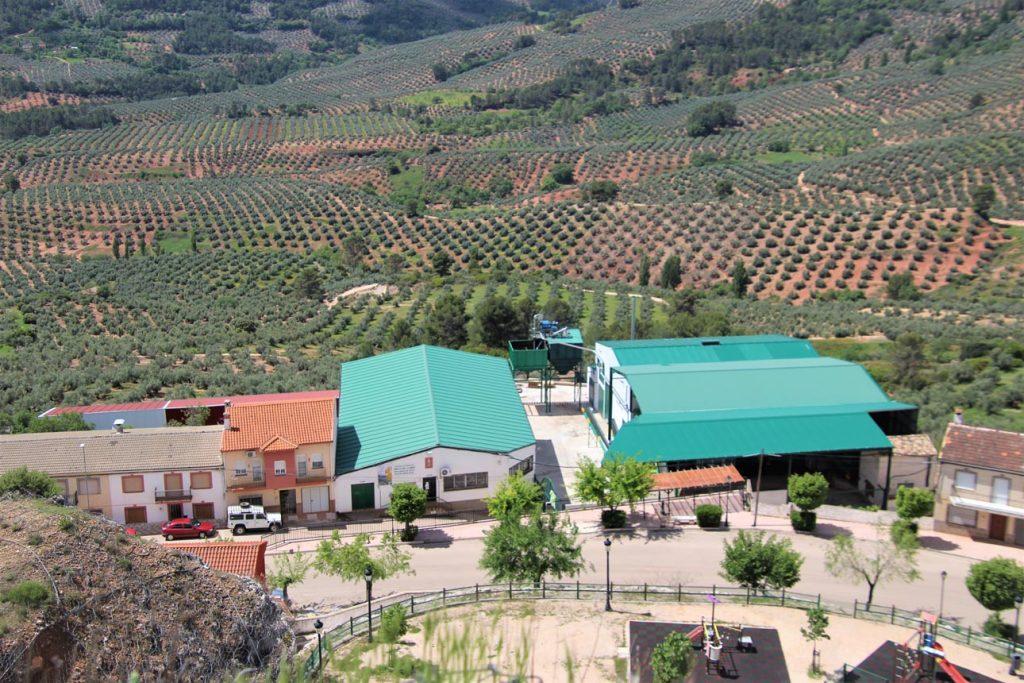 cooperativa de aceite de oliva do sierra de segura Virgen del Campo